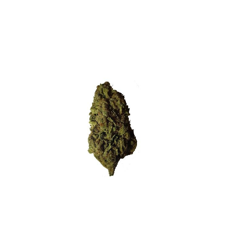 Girl Scout Cookies 1 G